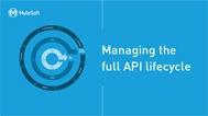 CTA_hs_small_mule_API_lifecycle_ebook.jpg